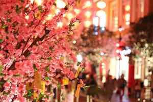 香港:夜遊燈火吉祥紅